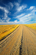 Road on Canadian prairie   (West Block) <br /> Grasslands National Park<br /> Saskatchewan<br /> Canada