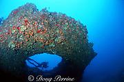 diver investigates puka (hole) in lava ledge, south shore, Kauai, Hawaii ( Pacific )