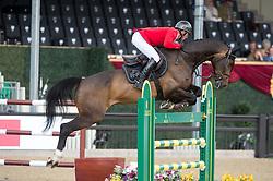 Schwizer Pius, SUI, Balou Rubin R<br /> CSI5* Jumping<br /> Royal Windsor Horse Show<br /> © Hippo Foto - Jon Stroud