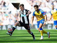 Football - 2021 / 2022 Premier League - Newcastle United vs Southampton - St Jame's Park - Saturday 28th August 2021<br /> <br /> Matt Ritchie of Newcastle United vies with Che Adams of Southampton<br /> <br /> Credit: COLORSPORT/Bruce White