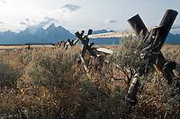 Buckrail fence and Teton mountains