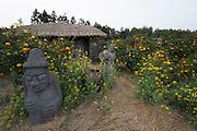 "Jeju Island. A basalt Dolharubang (""stone grandfather"") and a Heanyeo (Female diver) statues amidst orange trees and rape flowers."