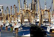 Nederland, IJmuiden, 26-2-2006Vissersschepen, vissersboten liggen werkloos in de haven van IJmuiden. Foto: Flip Franssen/Hollandse Hoogte