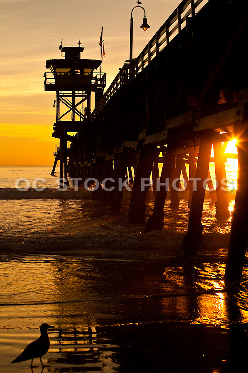 A Peaceful Sunset Under The San Clemente Pier