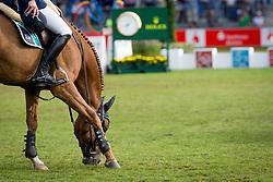 Deusser Daniel, GER, Tobago Z<br /> CHIO Aachen 2019<br /> © Hippo Foto - Sharon Vandeput<br /> 21/07/19