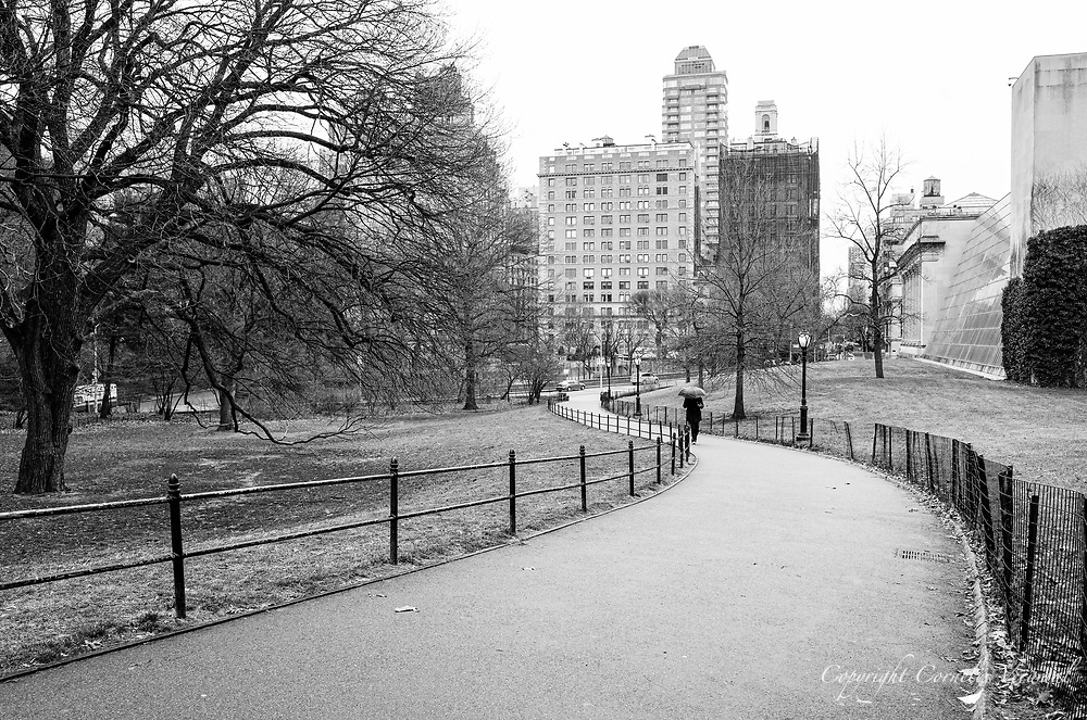 Winding walkway into Central Park north of the Metropolitan Museum of  Art.