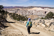Hike the Cockscomb, a striking monocline (geologic fold) in Grand Staircase-Escalante National Monument, Utah, USA. The Cockscomb is the northern extension of the East Kaibab Monocline, a major feature of the Colorado Plateau stretching over 100 miles north from the Grand Canyon. Directions to the easiest Cockscomb ascent: On Highway 89, drive 10 miles west of Big Water. Between mileposts 17-18 on H89, turn north on Cottonwood Canyon Road (#400) and drive 12 miles to where a side road turns east over the Cockscomb (a quarter mile south of Hackberry Canyon parking lot). Park at the bottom of the steep road and walk 3 miles round trip to the crest, gaining 950 feet.