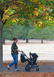 ©Licensed to London News Pictures 14/08/2020             Greenwich, UK. A mother pushing a baby buggy.Parched grass is joined by early autumnal leaves on the ground in Greenwich Park, Greenwich, London as the heatwave comes to an end leaving a humid and cloudy day today. Photo credit: Grant Falvey/LNP