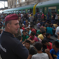 Police officers guard illegal migrants sitting on the platform as they wait to board a train in hopes to leave for Germany at the main railway station Keleti in Budapest, Hungary on September 03, 2015. ATTILA VOLGYI