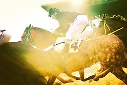 Monte com a condução de B.Santos vence o páreo de 1.800m para produtos de 4 anos sem vitória, 5 anos s/mais de uma vitória e 6 anos s/mais de duas vitórias com o tempo de 1m44s. FOTO: Jefferson Bernardes/ Agência Preview