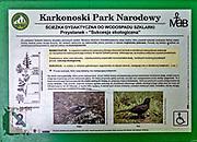 Wodospad Szklarki (woj. dolnośląskie), 26.07.2013. Tablica informacyjna koło Wodospadu Szklarki w Karkonoskim Parku Narodowym.