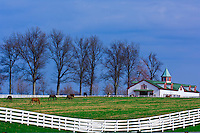 Calumet Farm, Lexington, Kentucky USA