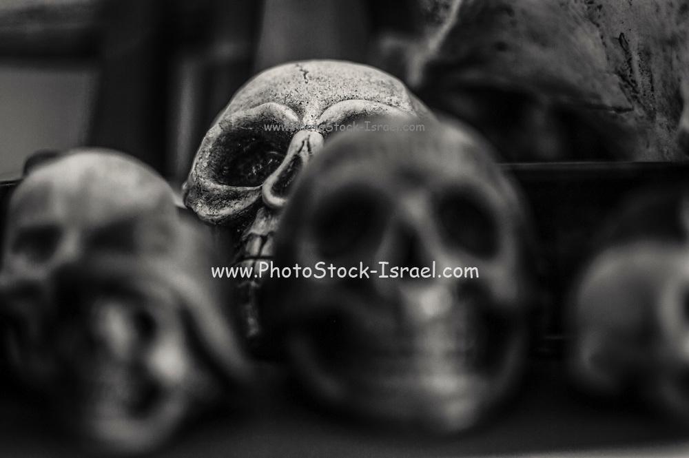 Skulls Selective focus