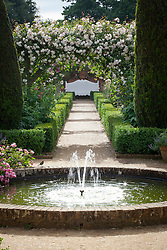 Fountain and benches in the rose garden at Mottisfont. Yew pillars, Rosa 'Adélaïde d'Orléans' on the arches, Rosa 'Raubritter' by the fountain. Low box hedges