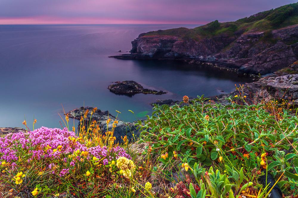 The beautiful coast of Silistar area