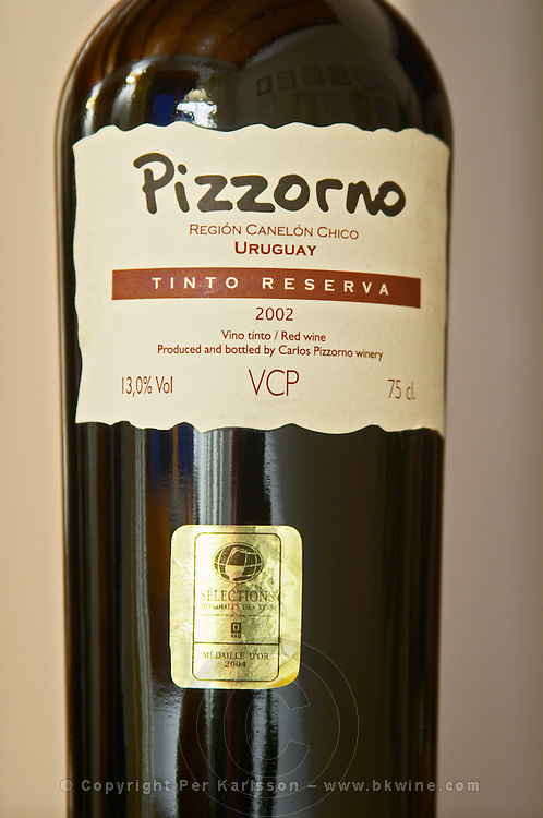 Bottle of Pizzorno Tinto Reserva 2002 Bodega Carlos Pizzorno Winery, Canelon Chico, Canelones, Uruguay, South America