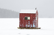 A red ice-fishing hut in a snowstorm on Eagle Lake, Acadia National Park, Maine.