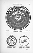 Viking ornaments and jewellery from the book ' The viking age: the early history, manners, and customs of the ancestors of the English-speaking nations ' Volume 2 by Du Chaillu, Paul B. (Paul Belloni), Published in New York by  C. Scribner's sons in 1890