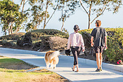 Couple Taking Their Dog For A Walk in the Harbor