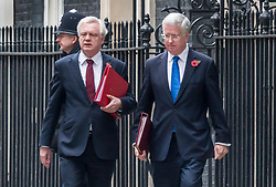 © Licensed to London News Pictures. 31/10/2017. London, UK. Defence Secretary Sir Michael Fallon (R) walks from Number 10 Downing Street with Brexit Secretary David Davis after attending a cabinet meeting. Journalist Julia Hartley-Brewer said that she rebuked Sir Michael after he put his hand on her knee during a dinner. Photo credit: Peter Macdiarmid/LNP