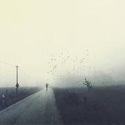 Man with umbrella walking on a countrroad on a misty day - black and white photograph