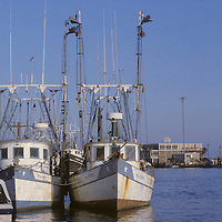 Shrimp and Oyster Fishing Boats Docked