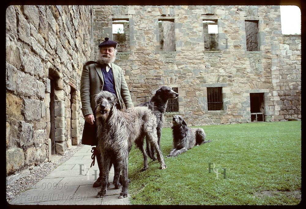 Raymond Morris, 30th Laird of Balgonie Castle, with deerhounds in courtyard of 14th-cen home; Fife Scotland