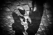 Paris, Montmartre, Place du tertre Shadows of pedestrians on Montmartre hill / ombre des passants , place du tertre a Montmartre