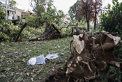 July 28, 2017 - Istanbul, Turkey - A collapsed tree is seen during a heavy torrential rainfall along with a storm in Istanbul, Turkey on July 27, 2017. The rain and storm that was effective in Istanbul caused many trees to fall. In Kadikoy, dozens of people in a park have taken over the big tree roots. (Credit Image: © Erhan Demirtas/NurPhoto via ZUMA Press)