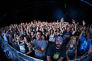 Fans cheer for the Trey Anastasio Band during day 2 of the Grand Point North music festival at Waterfront Park on Sunday afternoon September 17, 2017 in Burlington. (BRIAN JENKINS/for the FREE PRESS)