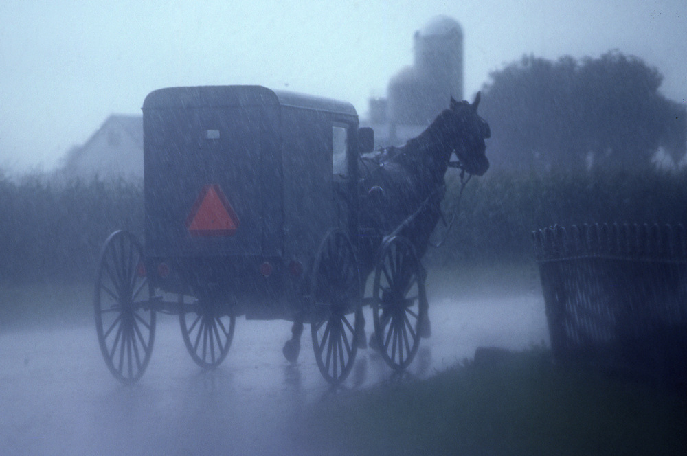 Amish horse and buggy in rain, Rt. # 340, Lancaster Co., PA