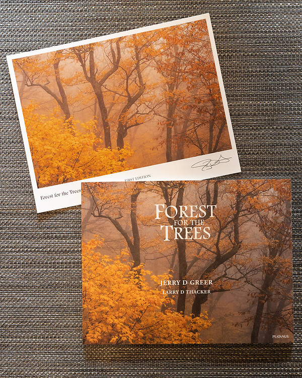 Forest for the Trees book with Print #1