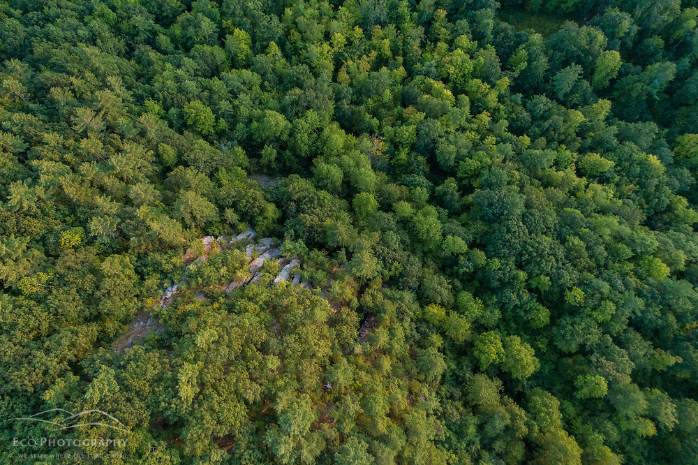An aerial view of Pismire Bluff in the Raymond Community Forest in Raymond, Maine.