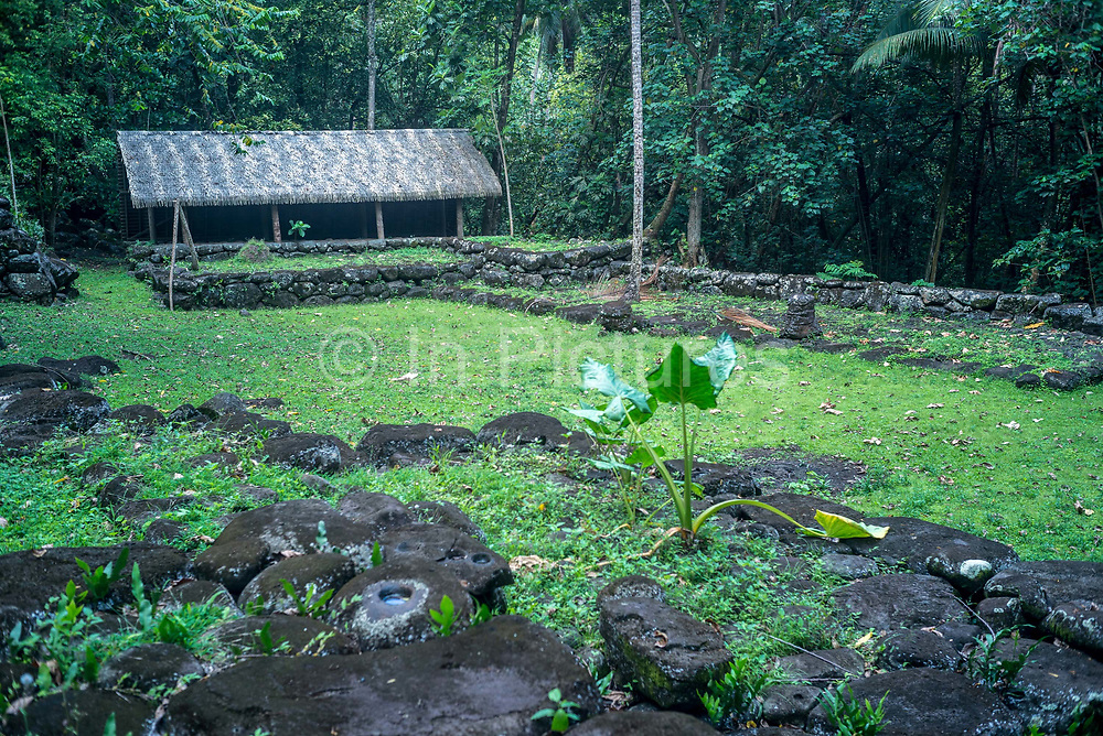 The archaeological site of Hikokua near the village of Hatiheu, Nuku Hiva, Marquesas Islands, French Polynesia.<br /> Discovered by the archaeologist Robert Suggs in 1957, it dates from around AD 1250 and was in use until the 1800s.