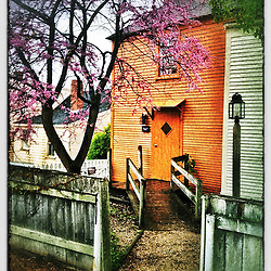 """Redbud and orange house at Strawbery Banke Museum in Portsmouth, New Hampshire. iPhone photo - suitable for print reproduction up to 8"""" x 12""""."""