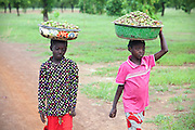Hassana Ibrahim, 11, (right) and her classmate Rahima Ibrahim, 11, (left, not sisters) are walking back to their village to attend school, after having each collected a load of Shea nuts to help supporting their families, near Boggu village, Tamale, northern Ghana.