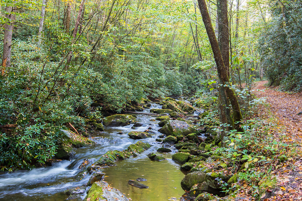 October 11, 2017: A rolling river with waterfalls near the Lynn Camp Prong Cascades.