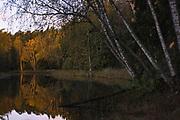First light of just risen Sun shines over river Seda and forest on its coast, Vidzeme, Latvia Ⓒ Davis Ulands | davisulands.com