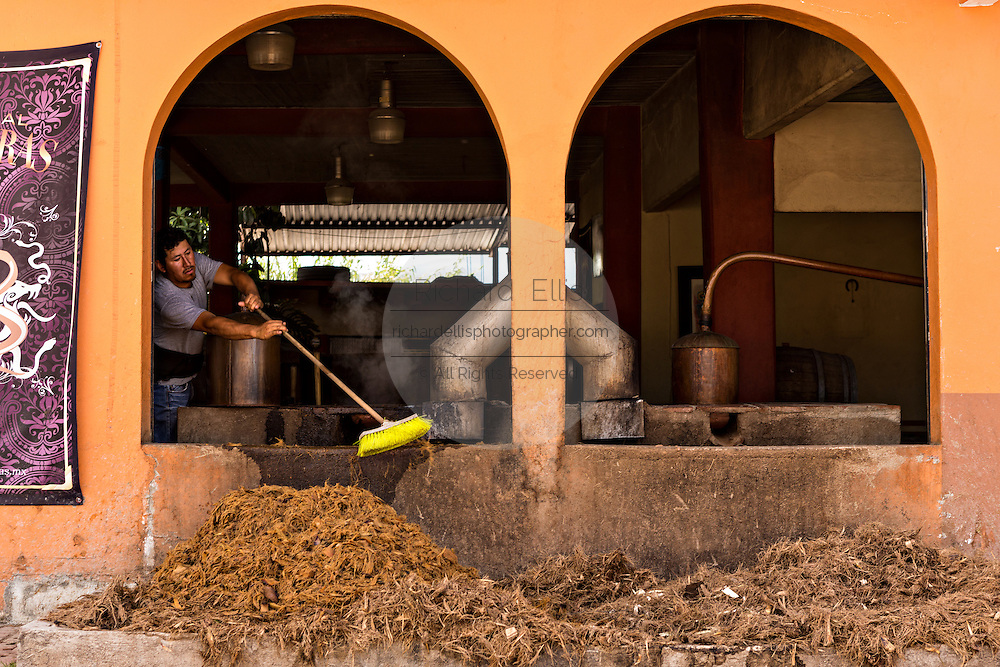 A worker clean off the spent blue agave hearts outside an artisanal Mezcal distillery November 5, 2014 in Matatlan, Mexico. Making Mezcal involves roasting the blue agave, crushing it and then fermenting the liquid.