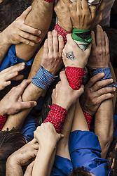 November 20, 2016 - Barcelona, Catalonia, Spain - The united hands of a base of a human tower by the 'Castellers de la Vila de Gracia' during a 'diada castellera' at Barcelona's Gracia quarter (Credit Image: © Matthias Oesterle via ZUMA Wire)
