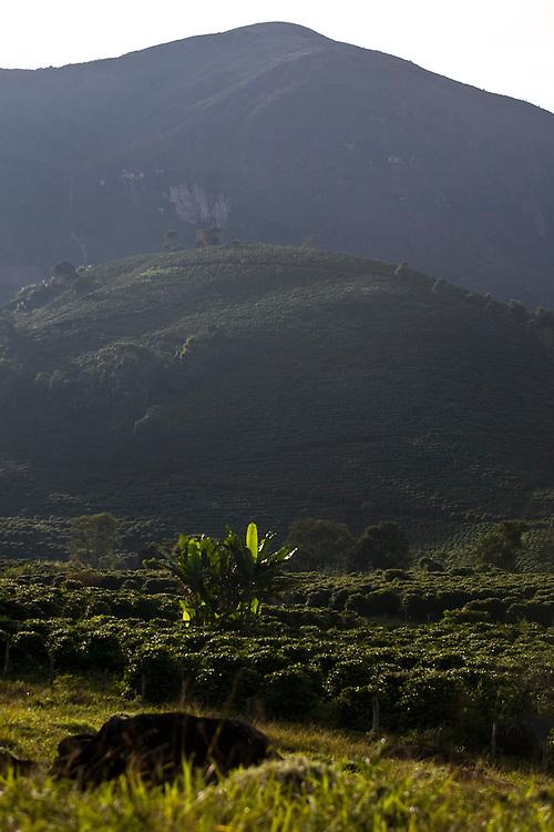 Alto Caparao_MG, Brasil...Paisagem no Parque Nacional do Caparao...The landscape in the Caparao National Park...Foto: BRUNO MAGALHAES / NITRO