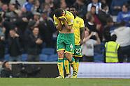 Brighton and Hove Albion v Norwich City 291016