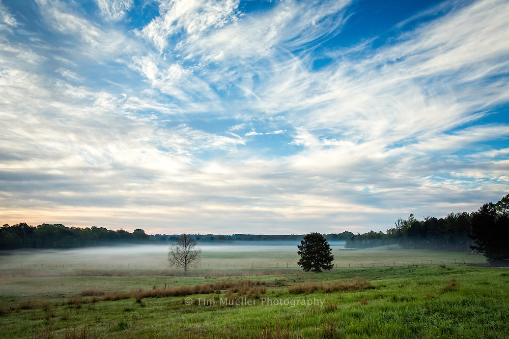 Farms and pasturses are part of the Toledo Bend Forest Scenic Byway on Louisiana Highway 191. The southern end of of the 76-mile byway starts at the reservoir dam, goes north through Sabine Parish and ends 20-miles into DeSoto Parish at Logansport and Hwy 84.