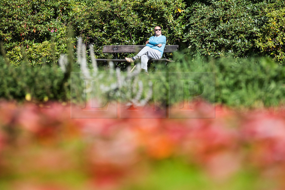 © Licensed to London News Pictures. 22/09/2015. Leeds, UK. Picture shows a man enjoying the sun in Temple Newsam park in Leeds on the first day of astronomical Autumn which happens with the Equinox of September the 22/23. Photo credit: Andrew McCaren/LNP