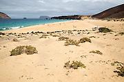 Sandy beach Playa de las Conchas, Graciosa island, Lanzarote, Canary Islands, Spain