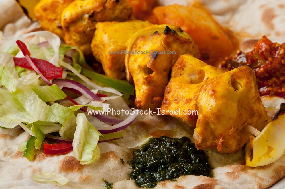 Indian Ethnical Food Tandoori chicken on Naan bread