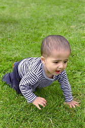 Young boy crawling across grass in park,
