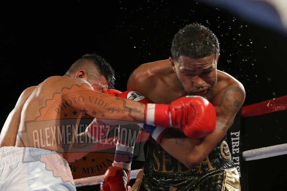 Rogelio Casarez lands a right hand to the face of Cesar Seda during a Fire Fist Boxing Promotions boxing match at the A La Carte Pavilion on Saturday, August 12 , 2017 in Tampa, Florida.  (Alex Menendez via AP)