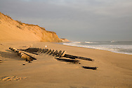 Sunrise washes the beach, where the bones of an old wreck were washed up in January of 2008.