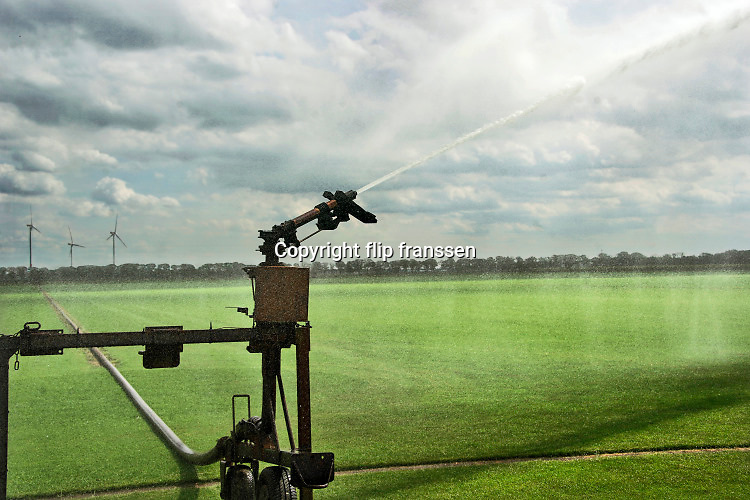 Nederland, Bergen, Limburg, 19-8-2020  Landgoed het Wellsmeer wat de gemeente wilt gebruiken voor de onwikkeling van een energiepark . Op dit moment is het agrarisch gebied. Vandaag zijn de boeren druk met beregenen van de percelen want het is langdurig droog en warm . o. a .Graszoden . .Foto: Flip Franssen
